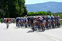 8th July 2021; Nimes, France; Illustration picture of the peloton riding in echelons during stage 12 of the 108th edition of the 2021 Tour de France cycling race, a stage of 159,4 kms between Saint-Paul-Trois-Chateaux and Nimes.