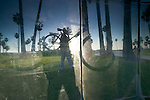 Cyclist & palm trees reflected in a window, Venice Beach, California, USA