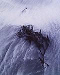 Beach furniture, Isle of Eigg
