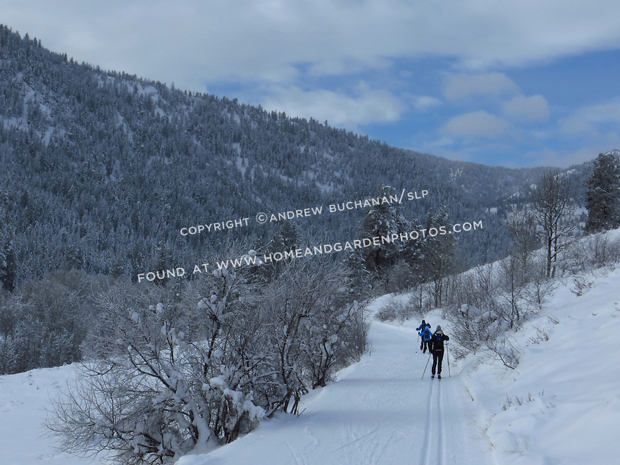 Cross-country skiing on a winter day in  Methow Valley, Washington