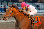 Vyjack, Joel Rosario up, wins the 2013 GIII Gotham Stakes at Aqueduct Racetrack. (( Special transmission of horses in the Top 25 for points for the 2013 KentuckyDerby ))
