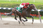 Long shot Flat Out with Alex Solis aboard score an upset in the 125th running of the Grade 2 Suburban Handicap, for 3 year olds & up, 11/8 mile.  Trainer Charles Dickey.  Owner Preston Stables