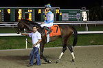 January 16, 2016: Mo Tom with Corey J. Lanerie up wins the Lecomte Stakes in New Orleans Louisiana. Steve Dalmado/ESW/CSM