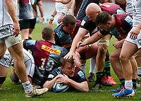 20th March 2021; Twickenham Stoop, London, England; English Premiership Rugby, Harlequins versus Gloucester; Harlequins, Gloucester; Alex Dombrandt of Harlequins touches down for his second try of the match