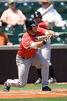 Outfielder Nick Hanslick #11 of the Texas Tech Red Raiders prepares to bunt against the Texas Longhorns on April 17, 2011 at UFCU Disch-Falk Field in Austin, Texas. (Photo by Andrew Woolley / Four Seam Images)