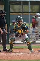 Oakland Athletics catcher Santiago Chavez (66) during a Minor League Spring Training game against the Chicago Cubs at Sloan Park on March 13, 2018 in Mesa, Arizona. (Zachary Lucy/Four Seam Images)