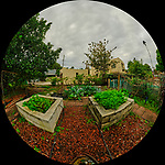 Urban Garden in St. Petersburg (Fisheye View). Composite of 21 images taken with a Fuji X-T3 camera and 8-16 mm lens (ISO 160, 8 mm, f/16, 1/60 sec). Raw images processed with Capture One Pro and AutoPano Giga Pro.