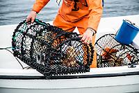 Crab fishing, Grebbestad, West Sweden, Sweden