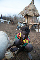 ETHIOPIA, Southern Nations, Lower Omo valley, Kangaten, village Kakuta, Nyangatom tribe, boy milking goats / AETHIOPIEN, Omo Tal, Kangaten, Dorf Kakuta, Nyangatom Hirtenvolk, Junge melkt Ziegen