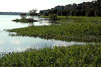 """PESCA DO PIRARUCU AUTORIZADA PELO IBAMA  800t - Somente este ano um programa iniciado pelo Instituto Mamirau·  teve permitido pelo Ibama a liberaÁ""""o de 800t do do maior peixe de ·gua doce do planeta, beneficiando milhares de pescadores da ·rea de influÍncia da reserva de desenvolvimento sustent·vel  Mamirau· . Um dos principais projetos da instituiÁ""""o o   programa de comercializaÁ""""o do pescado iniciado  em 1998 comeÁou com uma cota de  3t , com o sucesso do manejo do piraruc˙ este ano sobe para 800t. Mamirau·, TefÈ, Amazonas,  BrasilFoto Paulo Santos/Interfoto 02/12/2004."""