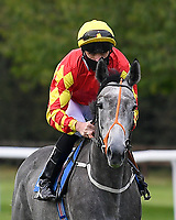 Jewel In My Crown ridden by Martin Harley goes down to the start of The Radcliffe & Co Novice Median Auction Stakes (Div 1) during Horse Racing at Salisbury Racecourse on 11th September 2020