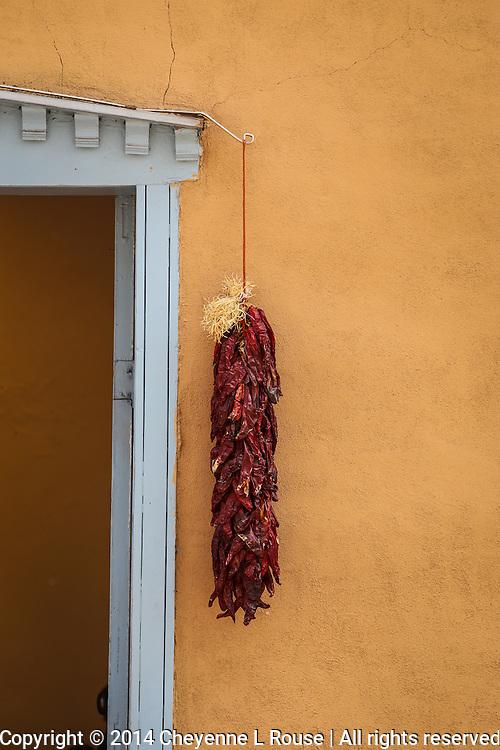 Chile Ristra - New Mexico