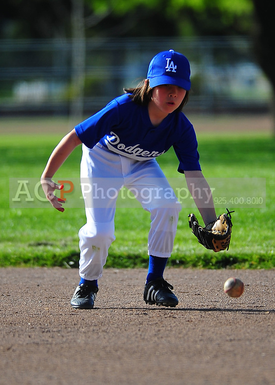 The Pleasanton National Little League AA Dodgers play at the Pleasanton Sports Park Thursday March 18, 2010. (Photo by Alan Greth)