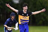 Cricket - Wanderers/Mot v Nel College
