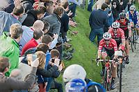 Fabio Felline (ITA/Trek-Segafredo) piloting John Degenkolb (DEU/Trek-Segafredo) up the Oude Kwaremont<br /> <br /> 60th E3 Harelbeke (1.UWT)<br /> 1day race: Harelbeke › Harelbeke - BEL (206km)