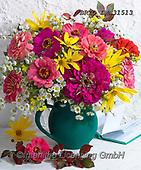 Alfredo, FLOWERS, BLUMEN, FLORES, photos+++++,BRTOLMN31513,#f#, EVERYDAY