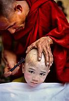 Yangon, Myanmar 2005 . Young Monk getting head shaved in Rangoon, Burma, 2005