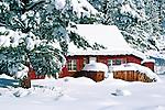 Mountain cabin in the Eastern Sierra, California