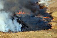 Wildfire at Lake Minnequa Park, Pueblo, Colorado. Dec 2012. JC80981