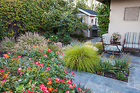 Side yard pathway entry into backyard patio with flowering rose, Lundstrom Garden, design by Susan Morrison