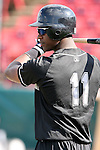 Wisconsin Timber Rattlers 2008