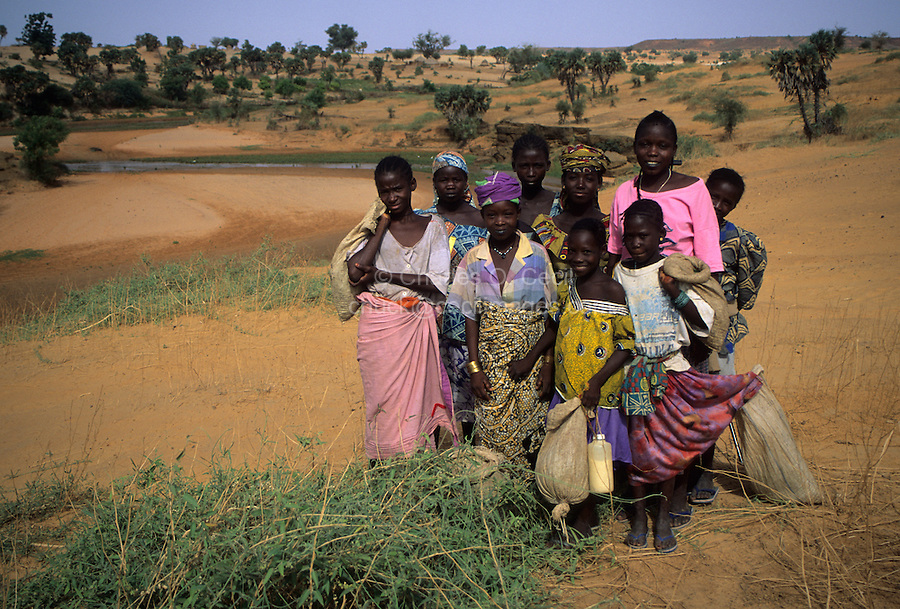 Near Niamey, Niger. Fulani Girls Gathering Edible Leaves for Food in the Sahel Landcsape near the Niger River.