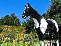 Old Paint, the horse statue at Lemo's Farm in Half Moon Bay.