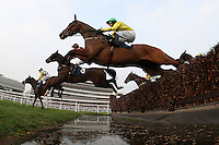 Runners and riders take the water jump during the Rickety Bridge Handicap Chase (In Aid of West Berkshire Mencap) - Horse Racing at Newbury Racecourse, Berkshire - 02/03/12 - MANDATORY CREDIT: Gavin Ellis/TGSPHOTO - Self billing applies where appropriate - 0845 094 6026 - contact@tgsphoto.co.uk - NO UNPAID USE.
