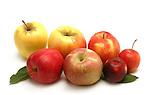 Apples still life.
