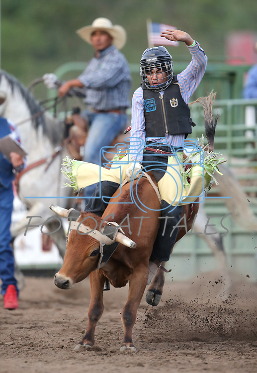 Carlos Gonzales competes in the steer riders portion of the 5th Annual Carson City Bulls, Broncs & Barrels event at Fuji Park, in Carson City, Nev., on Saturday, July 29, 2017. <br />Photo by Cathleen Allison/Nevada Photo Source