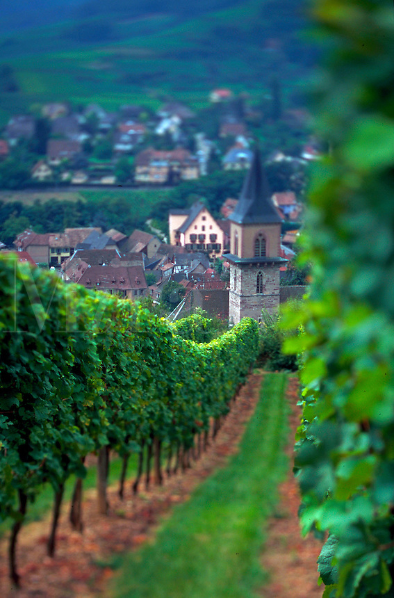 Village of Ribeauville in Alsace region of France.