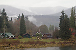 Puget Sound, Hood Canal, Hamma Hamma River, estuary, farmhouse, rain, winter, Washington State, Pacific Northwest, USA,