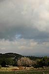 Israel, Mount Carmel, the road to the Muhraka