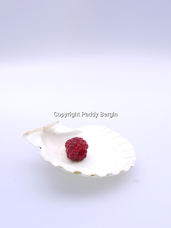 A raspberry may not be a pearl but it is a jewel of a fruit.<br />
