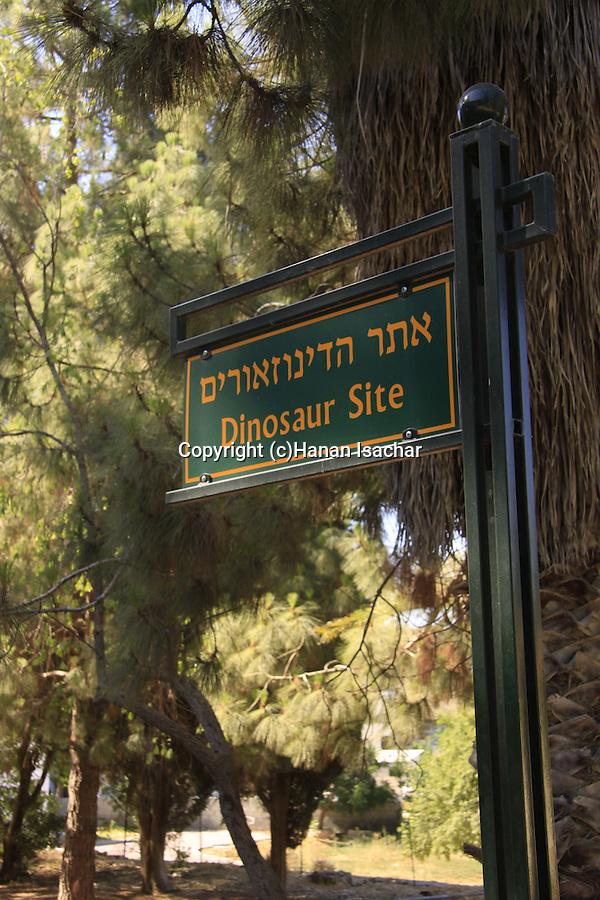 Israel, Jerusalem mountains, the Dinosaur site in Beit Zait