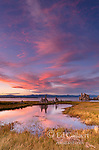 Sunset, Wetlands, Tufa Formations, Mono Lake, Mono Basin National Forest Scenic Area, Inyo National Forest, California