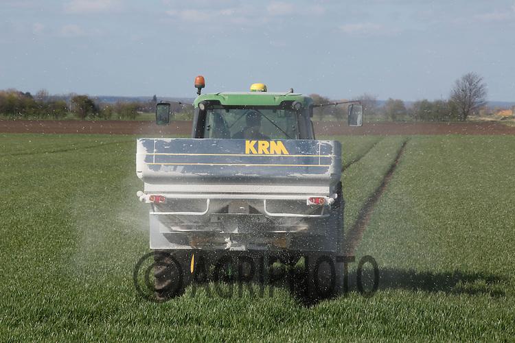 Applying nitrogen to Winter Wheat<br /> Picture Tim Scrivener 07850 303986