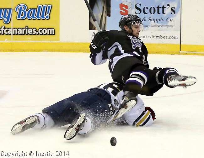 SIOUX FALLS, SD - JANUARY 3:  Conner Valesano #16 from the Sioux Falls Stampede slides under Garrett Cecere #7 from the Tri-City Storm in the first period Friday night, January 3, 2014 at the Sioux Falls Arena in Sioux Falls, South Dakota. (Photo by  Dave Eggen/Inertia)