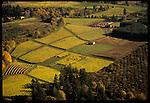 Aerial view of Rex Hill Vineyards in Newberg, OR.