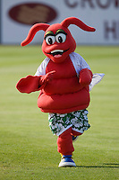 Conrad the Crawdad runs across the field between innings of the South Atlantic League game between the Rome Braves and the Hickory Crawdads at  L.P. Frans Stadium May 23, 2010, in Hickory, North Carolina.  The Rome Braves defeated the Hickory Crawdads 5-1.  Photo by Brian Westerholt / Four Seam Images