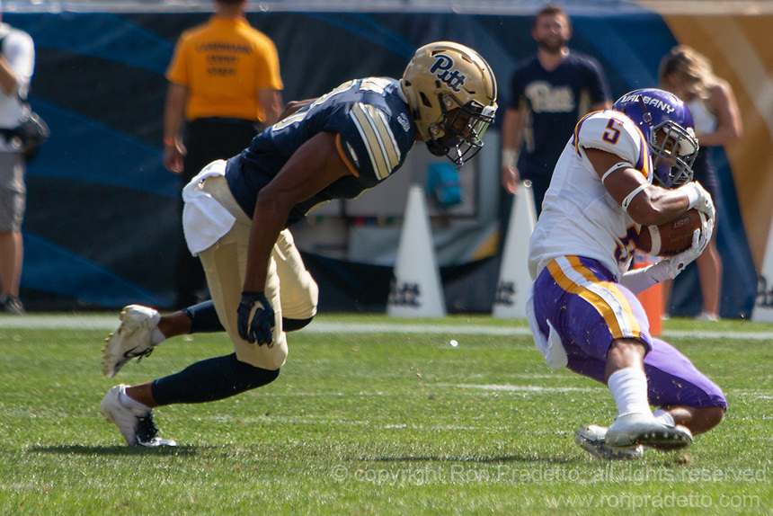 Albany wide receiver Dev Holmes makes a catch. The Pitt Panthers football team defeated the Albany Great Danes 33-7 on September 01, 2018 at Heinz Field, Pittsburgh, Pennsylvania.