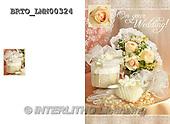 Alfredo, WEDDING, HOCHZEIT, BODA, photos+++++,BRTOLMN00324,#W#