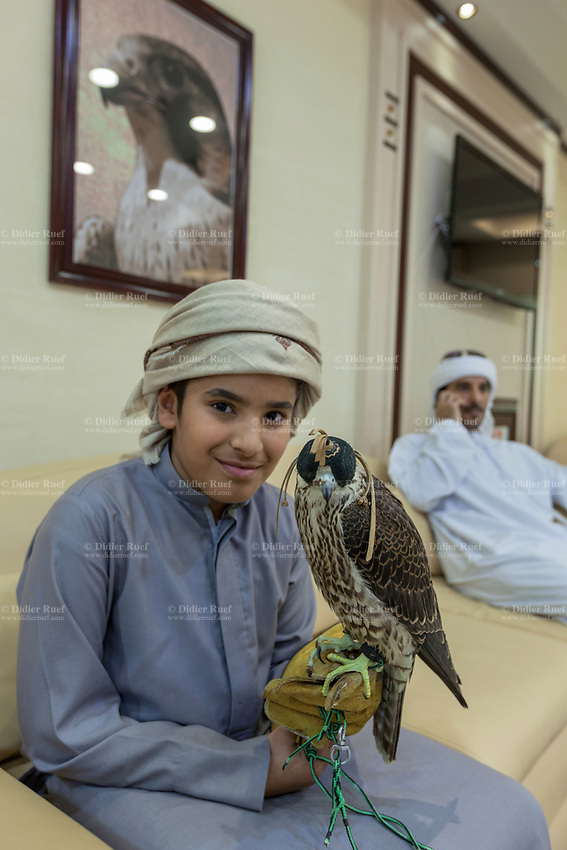 """United Arab Emirates (UAE). Abu Dhabi Falcon Hospital. <br /> A young boy with his father speaking on the phone are seated in the waiting room of the falcon's hospital. The smiling kid holds on a glove a falcon with a hood. The hospital is considered the leading center in the world for falcon medical care. It is equipped with everything a hospital requires for treating humans, except that the patients have wings. Both men wear the traditional thobes. A thawb (thobe, dishdasha, kandora) is an ankle-length garment, usually with long sleeves, similar to a robe, kaftan or tunic, commonly worn in the Arabian Peninsula. The headdress is called ghutrah. Falcons are birds of prey in the genus Falco, which includes about 40 species. Adult falcons have thin, tapered wings, which enable them to fly at high speed and change direction rapidly. Additionally, they have keen eyesight for detecting food at a distance or during flight, strong feet equipped with talons for grasping or killing prey, and powerful, curved beaks for tearing flesh. Falcons kill with their beaks, using a """"tooth"""" on the side of their beaks. The United Arab Emirates (UAE) is a country in Western Asia at the northeast end of the Arabian Peninsula. 19.02.2020  © 2020 Didier Ruef"""