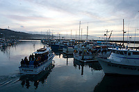 Boats head out for the 2008 Mavericks Surf Contest in Half Moon Bay, Calif., Saturday, January 12, 2008.