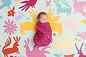 Newborn baby HB