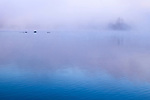 The early morning mist rises off Galeairy lake in Algonquin National Park.
