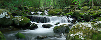 Panoramic of a cascade along Roaring Fork, Great Smoky Mountain National Park, Tennessee, USA