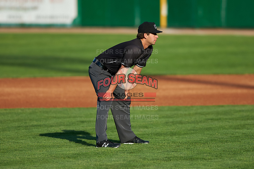 Umpire Clay Williams during a Midwest League game between the Peoria Chiefs and Bowling Green Hot Rods at Dozer Park on May 5, 2019 in Peoria, Illinois. Peoria defeated Bowling Green 11-3. (Zachary Lucy/Four Seam Images)