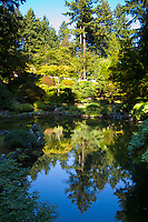 Reflection of trees and bushes in upper pond of Strolling pond garden (chisen kaiyu shiki niwa) in Portland Japanese Garden