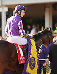 St. Nicholas Abbey, ridden by jockey Joseph O'Brien and trained by Aidan O'Brien wins the Breeders' Cup Turf at Churchill Downs on  November 4, 2011..